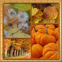 Scenes of Autumn